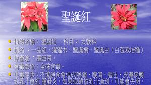 校園有毒植物介紹