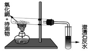 有機化合物--講義(自然第四冊第五章)(南一100版)