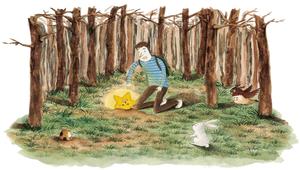 2013全國學生圖畫書得獎作品-星星掉下來了