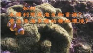 永續發展的淺海環境