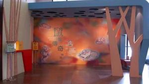 標本巡迴展延伸博物館的環境教育—以鼠輩傳奇特展為例