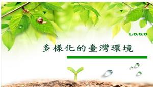 台灣的棲息環境(多樣化的台灣環境)