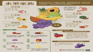 【灃食教育基金會-良食圖譜】水果家族