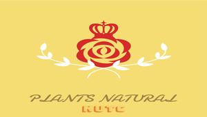 自然科學-植物課程之AR/VR教材開發